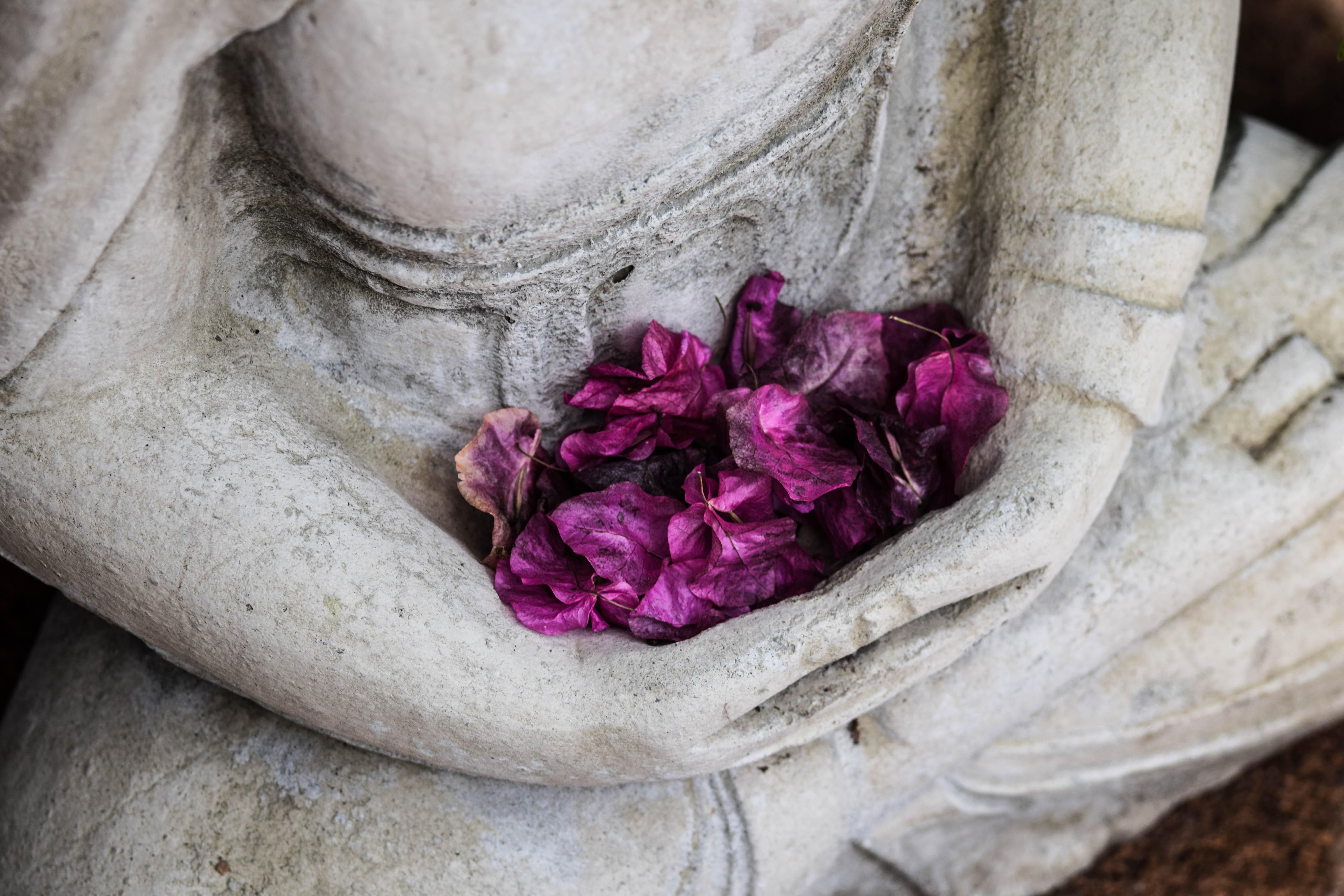 Portada Ho'Omana Buda flores