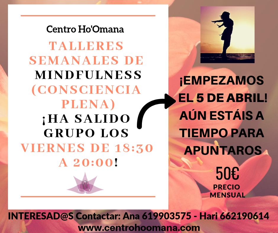 Talleres semanales de Mindfulness (Consciencia Plena)